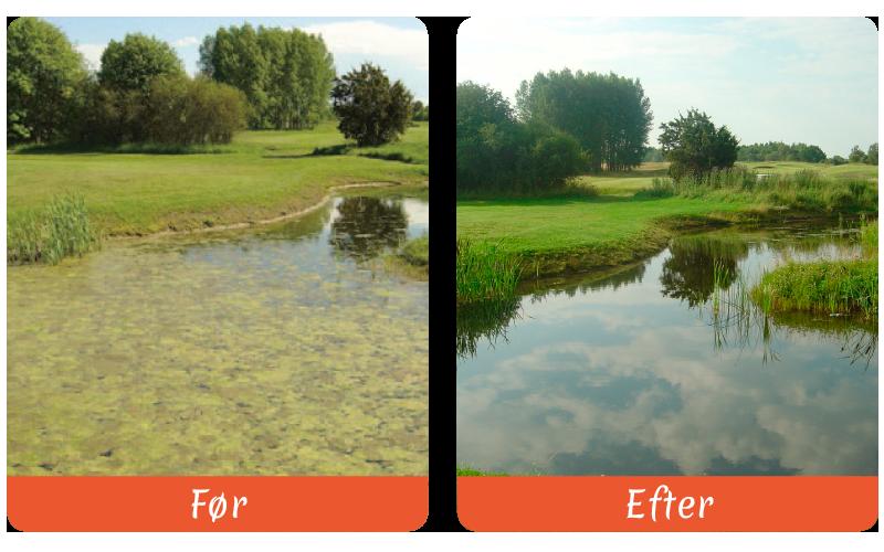 pond-relief-pos