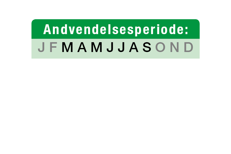 anvend-lawnsand-dk