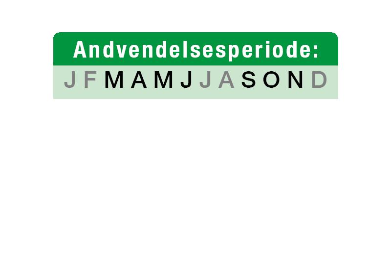 anvend-roser-dk